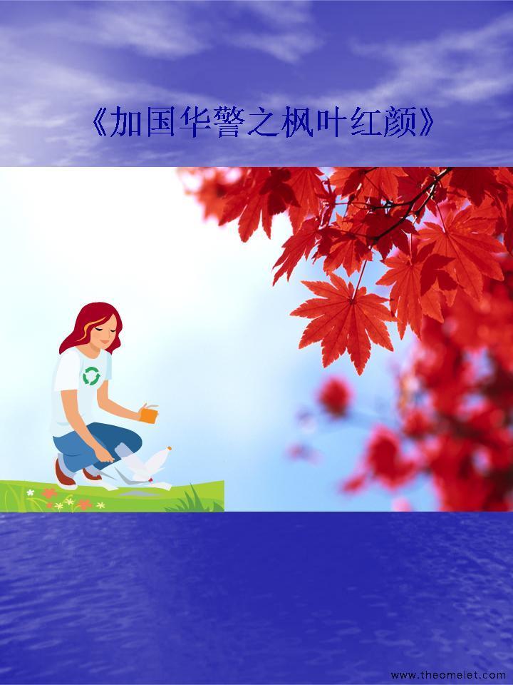 加国华警之枫叶红颜全文阅读